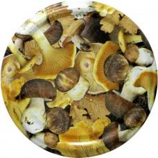 Jar Lids 10pcs 82 mm - Mushrooms