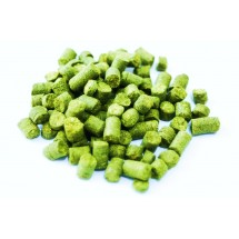 Simcoe 25g - USA Hops